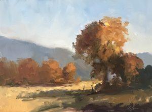 Fall Trees in the Sangre de Cristo Mountains